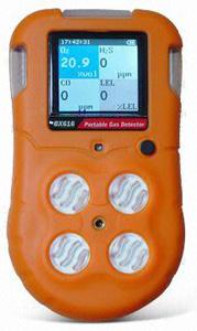 Multi Gas Detector BX616